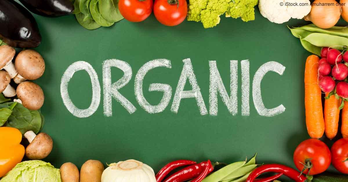 Reasons Behind Why We Choose An Organic Menu